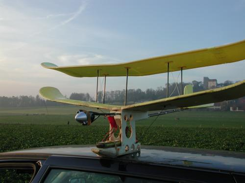modified Wingo Porter